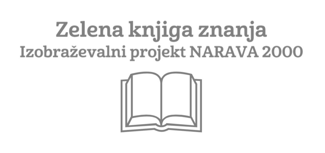 Zelena knjiga znanja